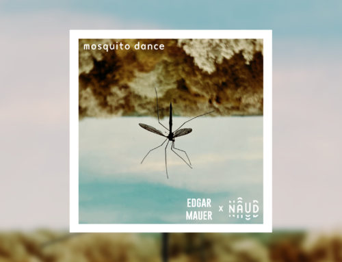 Mosquito Dance: new single by Naud (ft. EDGAR MAUER) releases on January 29th