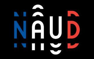 French flag Naud